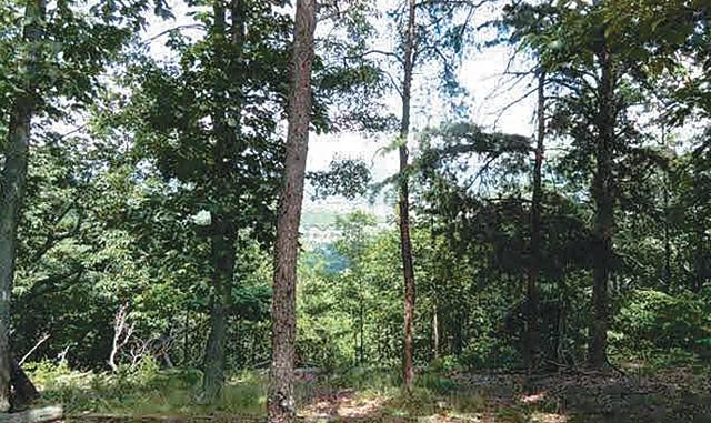Land for Sale, ListingId:35052362, location: Green Mountain Huntsville 35803