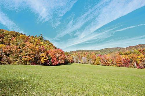 Real Estate for Sale, ListingId: 36015758, Hartford,TN37753